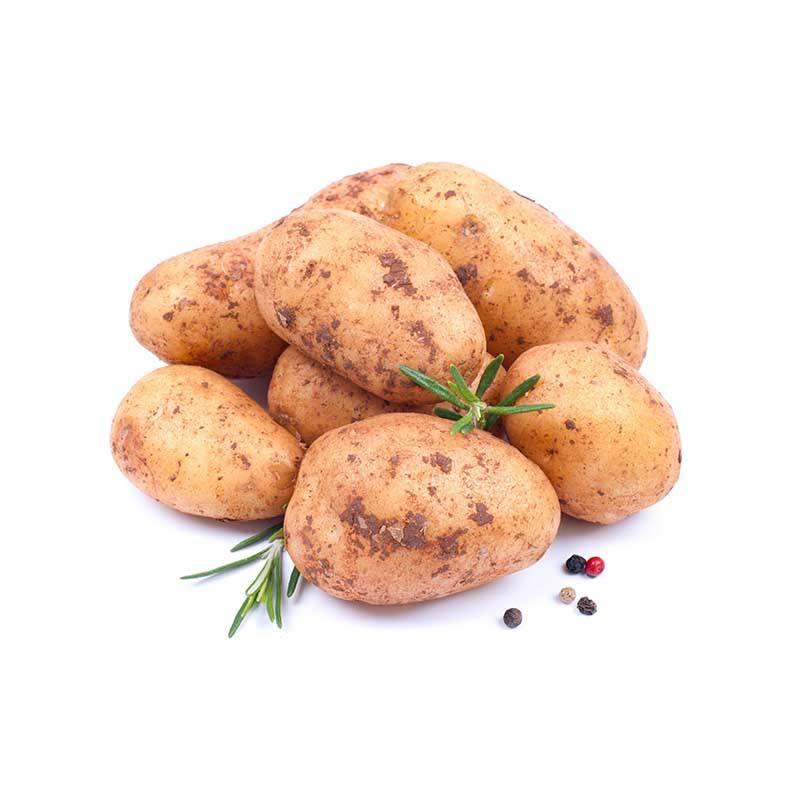 Pommes de terre nouvelles pommes de terre l gumes grossiste produits frais - Cuisiner des pommes de terre nouvelles ...