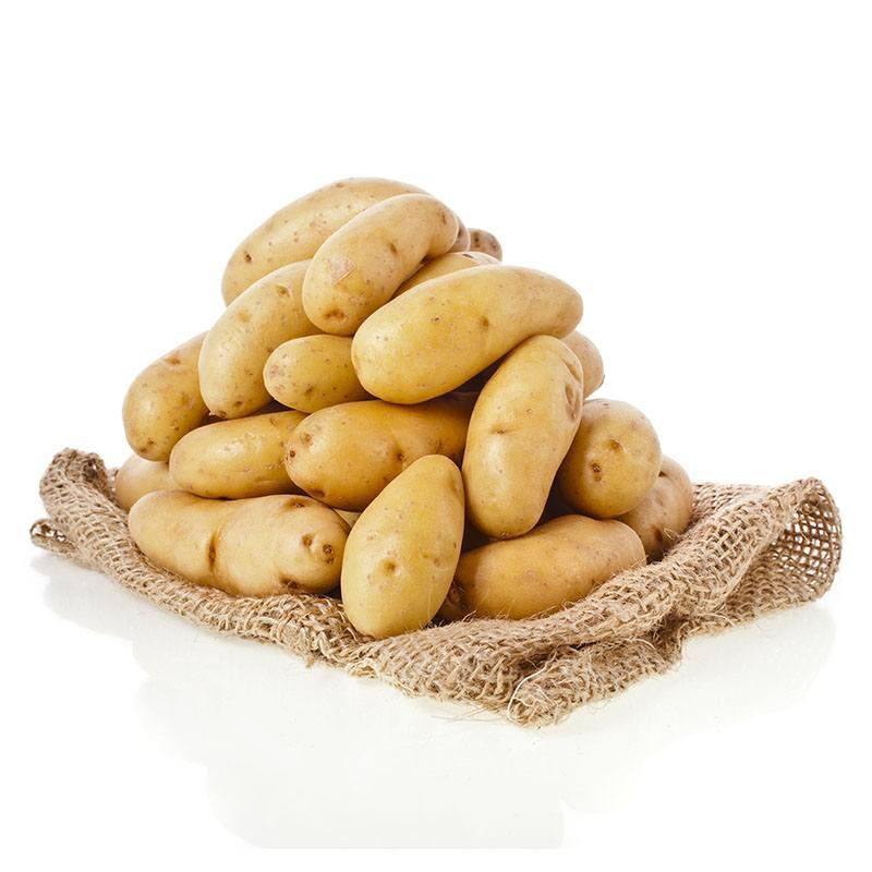 Pommes de terre de conservation pommes de terre l gumes grossiste produits frais - Conservation pomme de terre cuite ...